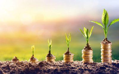 EU-Greenbonds: Einheitliches Grün?